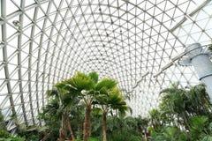 Jardin botanique de Changhaï de shan de Chen Photographie stock