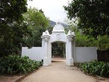 Jardin botanique de Rio de Janeiro photos libres de droits