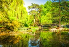 Jardin botanique de Wroclaw, Pologne image stock
