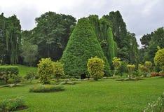 Jardin botanique, Kandy Photo stock