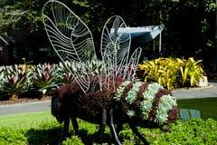 Jardin botanique royal photo libre de droits