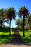 Jardin botanique royal, Sydney Photo libre de droits