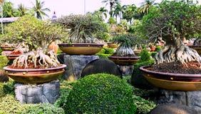 Jardin botanique tropical de Nong Nooch Photographie stock libre de droits