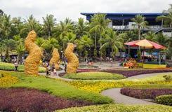 Jardin botanique tropical de Nong Nooch Images stock