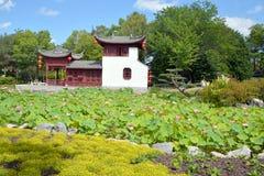 Jardin chinois Photo stock