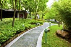 Jardin chinois avec le chemin de marche image stock