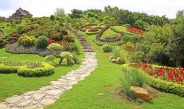 Jardin chinois de source Photographie stock