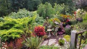 Jardin coloré luxuriant d'été en Caroline du Nord Image libre de droits