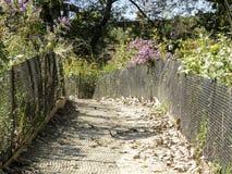 Jardin communal dans l'automne Images libres de droits