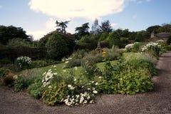 Jardin complètement des fleurs Photographie stock