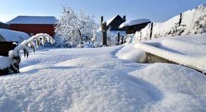 Jardin couvert de neige blanche fraîche et pelucheuse, paysage de l'hiver d'Ural Photos stock