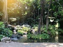 Jardin décoré comme petite forêt et cascade avec le passage couvert de caillou sous la lumière du soleil image stock