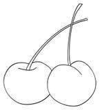 Jardin délicieux - deux cerises avec le leur refoule Photo stock