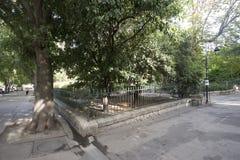 Jardin d'été, Arles, Frankrike Royaltyfria Bilder