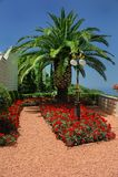 jardin d'éléments de bahai Photos stock