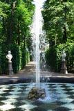 Jardin d'été à St Petersburg, Russie Photos libres de droits