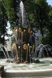 Jardin d'été à St Petersburg, Russie Photo libre de droits