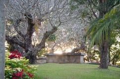 Jardin d'agrément Photo libre de droits