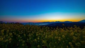 Jardin d'agr?ment de Canola de laps de temps de coucher du soleil au parc d'Azumayama dans l'inclinaison tir?e large de Shounan K clips vidéos