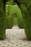 Jardin d'Alhambra photographie stock libre de droits