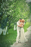jardin d'Apple-arbre Photos libres de droits