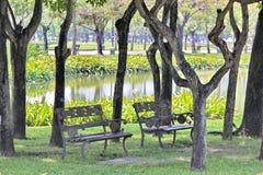 Jardin d'arbres Photographie stock libre de droits