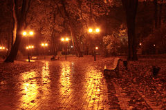 Jardin d'automne Photo stock