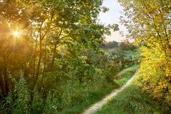 Jardin d'automne de paradis Photos libres de droits