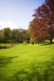 Jardin d'Autum Photo stock