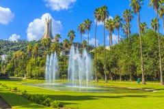 Jardin D 'essais, Algiers royaltyfria bilder