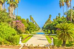 Jardin d ?essais, Algiers zdjęcie stock