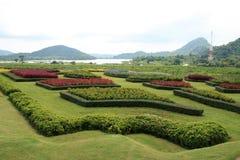 Jardin d'horizontal en Thaïlande. Image libre de droits