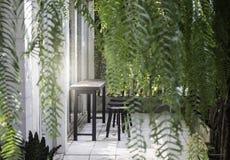 Jardin d'intérieur de plante verte Image libre de droits
