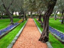 Jardin d'olivier, temple de Bahai, Haïfa, Israël Images libres de droits