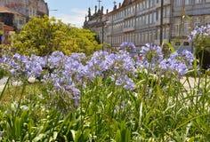 Jardin d'une place portugaise Image libre de droits