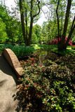 Jardin dans Keukenhof, Pays-Bas Images stock