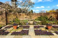 Jardin dans le printemps Photographie stock