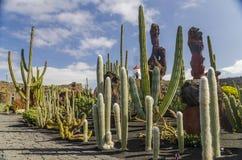 Jardin De Кактус Лансароте стоковое фото