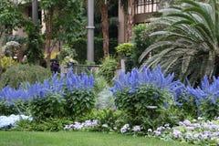Jardin de bleu et de blanc Images libres de droits