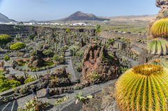 Jardin De Cactus兰萨罗特岛 免版税库存照片