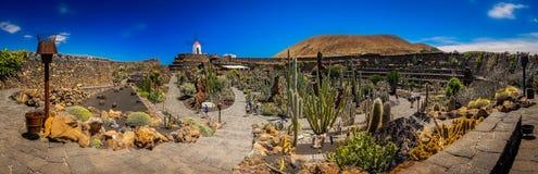 Jardin de cactus panorama Stock Images