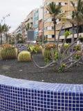 Jardin de cactus sur les îles Canaries grandes S de Las Palmas de promenade de promenade Image stock