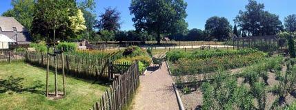 Jardin de campagne pendant l'été photo libre de droits