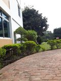 Jardin de campus Photographie stock
