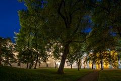 Jardin de cathédrale de Vilnius la nuit Photographie stock