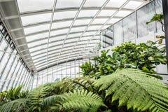 Jardin de ciel dans le bâtiment de talkie - walkie, Londres Photos libres de droits