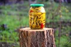 Jardin de conserves au vinaigre de piment naturel photos stock