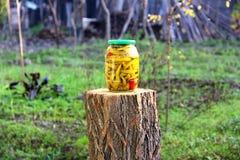Jardin de conserves au vinaigre de piment naturel photos libres de droits