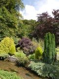 Jardin de cottage Photos libres de droits