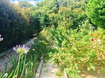 Jardin de cottage de pays Photographie stock libre de droits